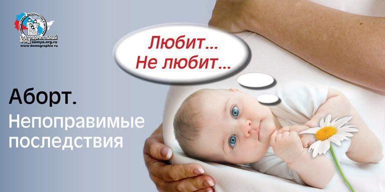 abortion essaywk1 final2815